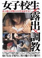 素人娘の本物のエロを追求する!! 女子校生×露出×調教 ●げな女子校生に男の魔の手が襲う!! ダウンロード