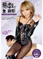 悪戯な泉麻那 パーフェクトコレクション240分 SPECIAL 総集編