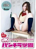 「悩殺!JKパンチラ学園」のパッケージ画像