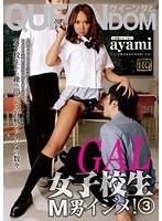 「GAL女子校生M男イジメ! 3 ayami」のパッケージ画像