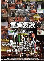 童貞哀歌 Virgin Elegy 〜童貞喪失ドキュメント〜