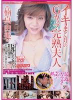 巨乳マンション 〜イキまくりのGカップ完熟夫人〜 ダウンロード