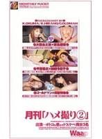 月刊「ハメ撮り2」