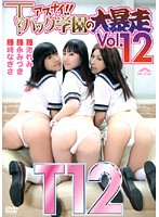 アブナイ!!Tバック学園の大暴走 Vol.12 ダウンロード
