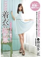 「CFNM 着衣の極意 神波多一花」のパッケージ画像