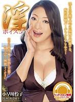 「淫ボイス3 小早川怜子」のパッケージ画像