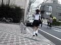 街角スカートめくりVOL.4 36