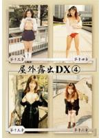 屋外露出DX 4 ダウンロード