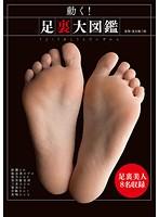 (36doks00390)[DOKS-390] 動く!足裏大図鑑 ダウンロード