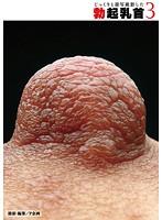(36pk00021)[PK-021] じっくりと接写撮影した勃起乳首 3 ダウンロード