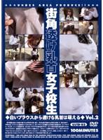 街角透け乳首女子校生 Vol.2 ダウンロード