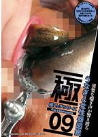 極フェチシリーズ09 うなぎと女性器図鑑 ダウンロード