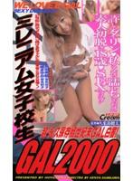 ミレニアム女子校生 GAL2000