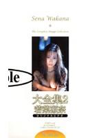 (41hmp008)[HMP-008] 大全集2 若菜瀬奈 ダウンロード