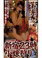「新宿23時 小娘狩り」のパッケージ画像