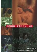 「盗撮覗撮 激写投稿 青姦SEX」のパッケージ画像