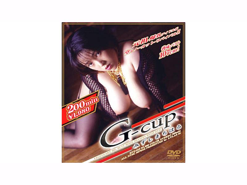 [BVD-010] G-cup みずしまちはる
