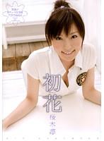 (47adz081)[ADZ-081] 初花-hatsuhana- 桜木凛 ダウンロード
