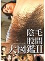 股間陰毛大図鑑2