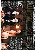 川崎軍二シリーズ 妖艶熟女 芸者舞い 淫獣・義母兄妹 ダウンロード