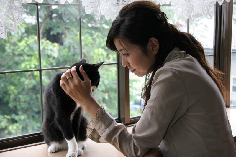 無料av動画 吉沢明歩とサンプル画像が多数あります