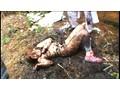 [IBW-196] 逃げる少女を捕まえて犯す鬼畜映像