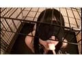 90日間監禁飼育され続けた少女の映像記録 12