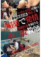 「いたいけな可愛い教え子を媚薬で発情させて猥褻行為を続ける小○校教師」のパッケージ画像