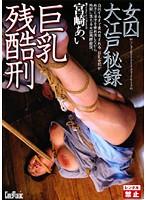 女囚大江戸秘録 巨乳残酷刑 宮崎あい ダウンロード