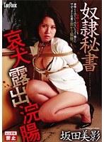 「奴隷秘書 哀犬露出浣腸 坂田美影」のパッケージ画像