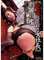 牝犬にされた女社長 剥麗の檻 川村典子 生田沙織 ダウンロード