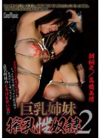 巨乳姉妹搾乳性奴隷2 朝桐光/高橋美緒