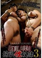 巨乳姉妹搾乳性奴隷 3 河西あみ YANAMO