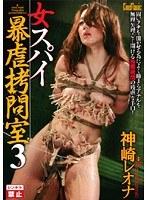 「女スパイ暴虐拷問室3」のパッケージ画像