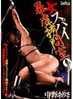 「女スパイ暴虐拷問室 9 中野ありさ」のパッケージ画像