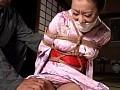 ビクセン総集編 凌辱の記録 8