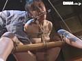 監禁蔵の女 3