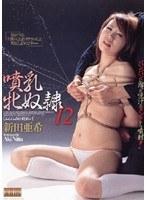 噴乳牝奴隷 12 新田亜希 ダウンロード