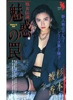 (52fe00032)[FE-032] 魅惑の罠 杉本綾香 ダウンロード