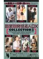 職業別発情素人DX COLLECTION 2 ダウンロード