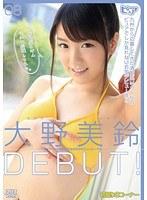 「大野美鈴DEBUT!」のパッケージ画像