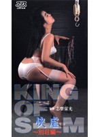 KING OF SM 快虐 ~別荘編~