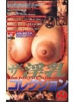 ザ・淫乳コレクション 2