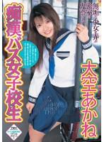 「痴漢バス女子校生 大空あかね」のパッケージ画像