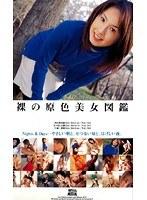 (57d00633)[D-633] 裸の原色美女図鑑 ダウンロード