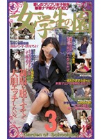 「女学生の園 3」のパッケージ画像