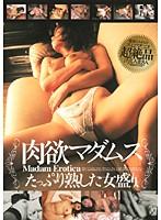 (62cadr226)[CADR-226] 肉欲マダムス たっぷり熟した女盛り ダウンロード