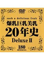 爆乳巨乳美乳20年史 Deluxe 2 ダウンロード