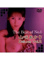 (62dajm00009)[DAJM-009] The Best of No.1 山咲あかり Deluxe Vol.2 ダウンロード