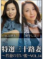 特撰三十路妻 若妻の甘い蜜 Vol.14